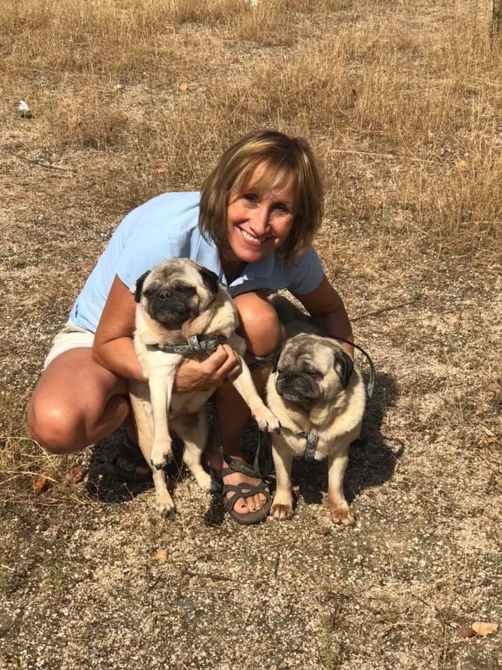 Lucy Premier Pet Travel